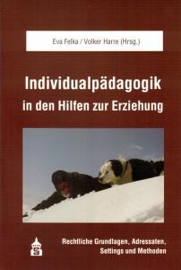 Buch Individualpädagogik